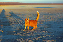El Mirage Dry Lake