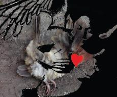 """Ilustración para el libro """"Los pájaros del pueblo"""" de Mario Meléndez"""