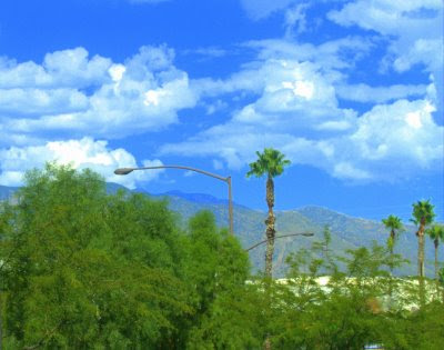 A perfect day in Tucson