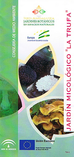 Notas cordobesas jard n micol gico la trufa zagrilla for Jardin micologico la trufa