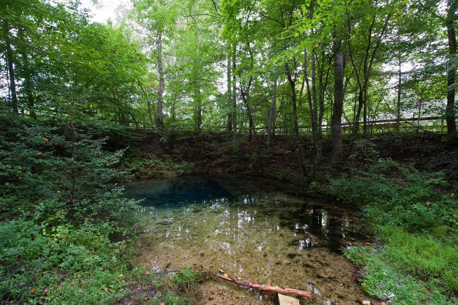 Tonys blog blue hole at red clay state park red clay state historic park is located in the extreme southwest corner of bradley county in tennessee just above the tennessee georgia state line publicscrutiny Image collections
