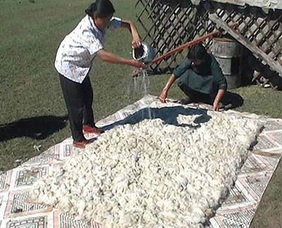 Il tappeto di Feltro: progenitore dei tappeti Persiani di ...