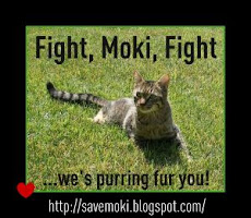 Get Well Soon, Moki