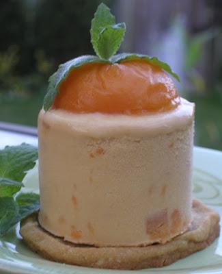cuisinart 2 quart ice cream maker instructions