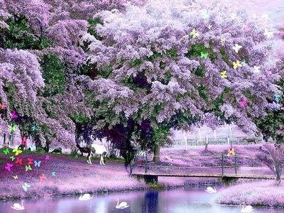 linda paisagem,primavera,vida,estações,árvores,folhas,lago