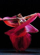 A dança é linguagem que a alma encontrou para exteriorizar a sua essência na forma mais pura