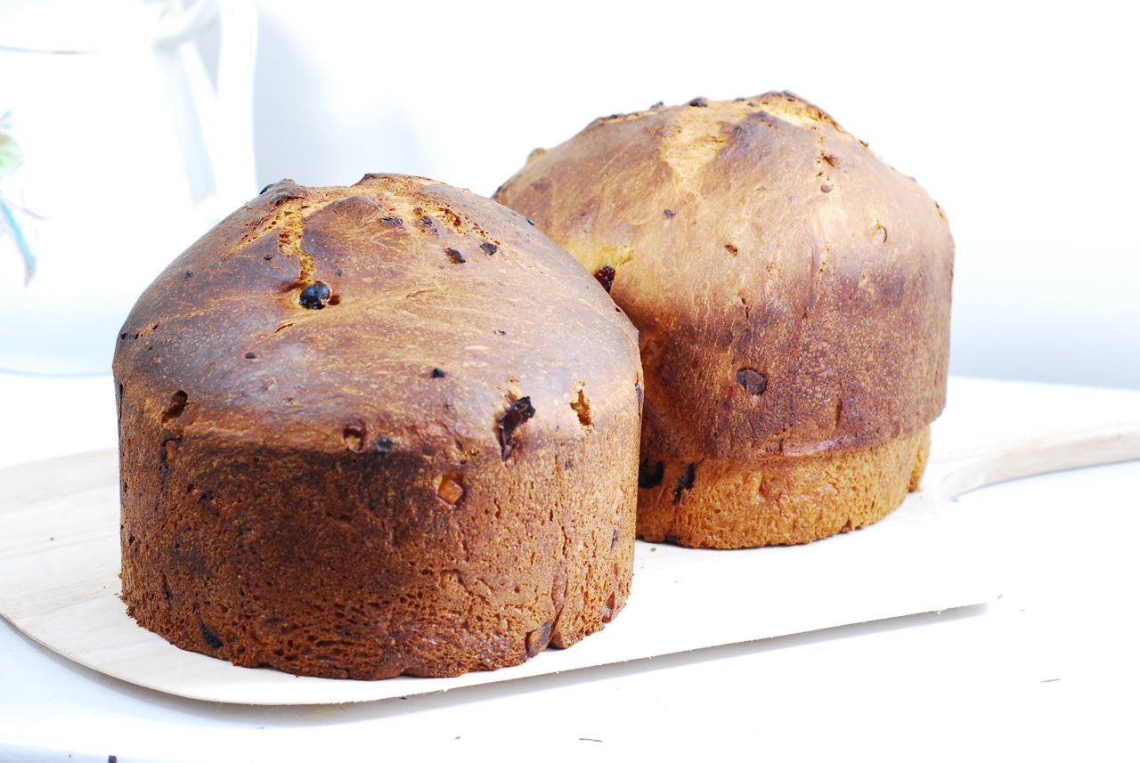 Know Whey: Panettone!