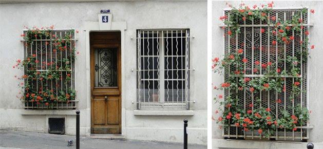 """grade de jardim vertical : grade de jardim vertical:Casinha Bonitinha: """"Há flores em tudo o que eu vejo"""""""