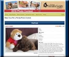 Vote for Truffles Save Shelter Animals: San Diego Humane Society 2010 Calendar