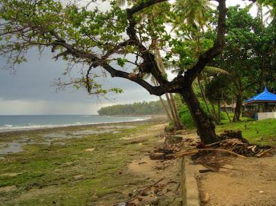 Geen rice field view zoals op Bali, wel zicht op zee vanuit het Divers Resort in Latuhalat, Ambon
