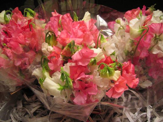 Sweet Pea Bouquets