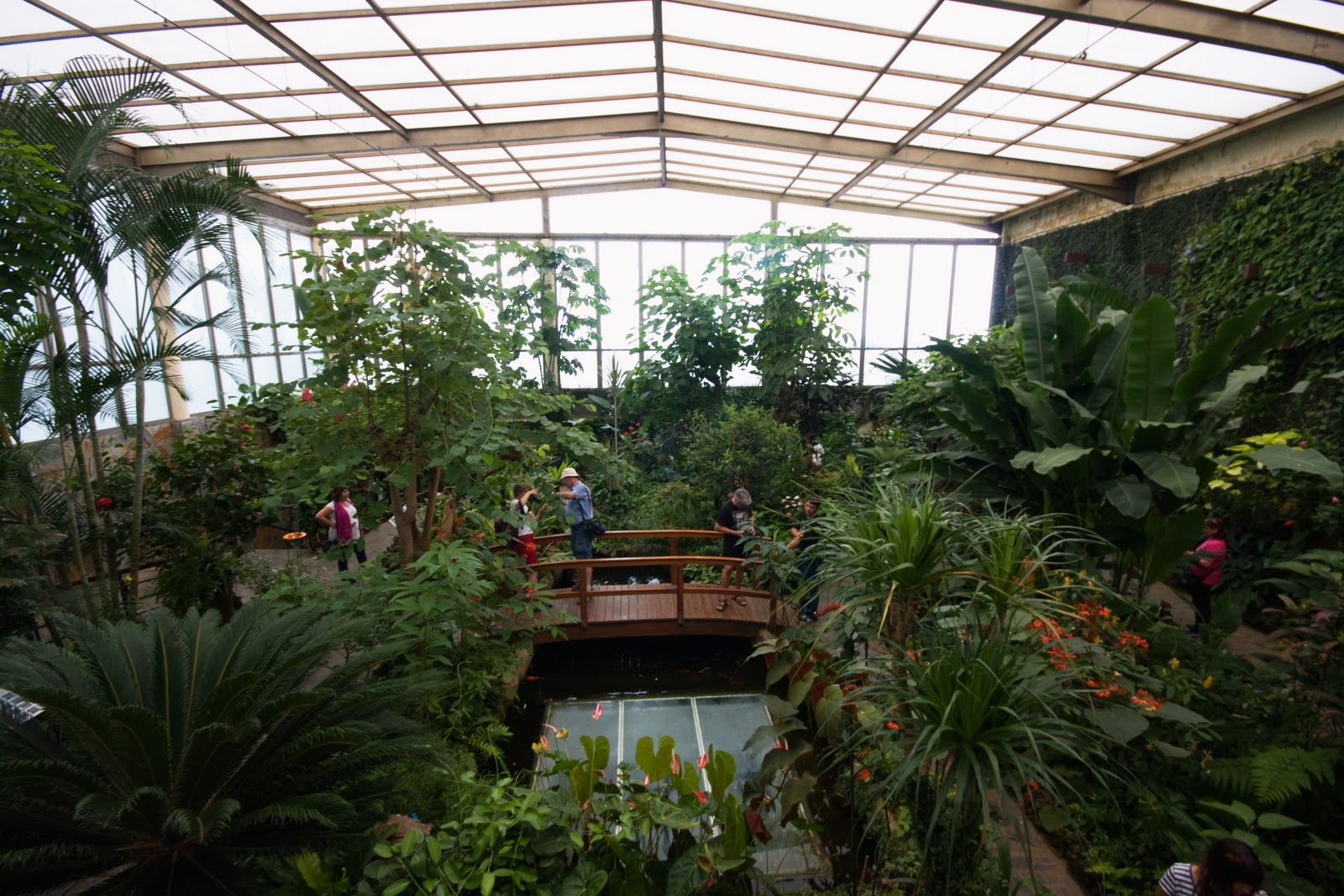 Mariposario del Drago - Tenerife - Regency Country Club