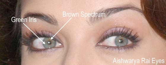 Look At Her Beautiful Face: Perceiving The Eye Color Of ...
