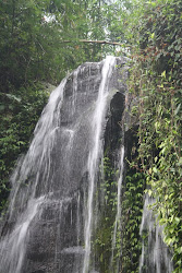 Lokasi Camping terbaik di Bogor