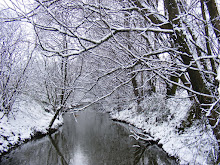 The Bonny in the snow