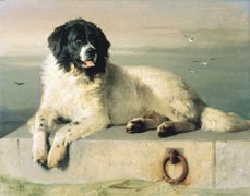 A distinguished member of human society, by Sir Edwin Landseer