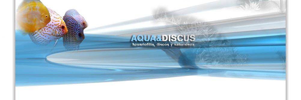 Aqua & Discus