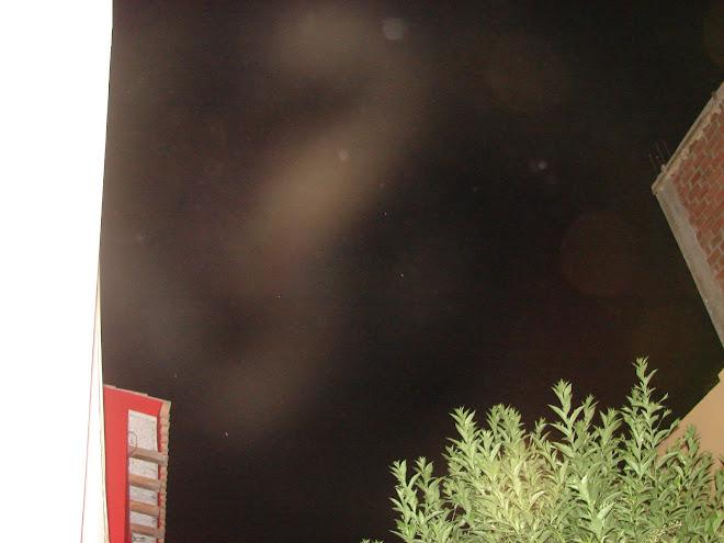 Alien gris de Nibiru metamorfosis 27/enero/2010 sec