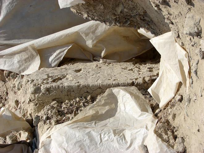 11,12,Ciudadelas Sagradas y sus Playas 2010,sec Vegueta...
