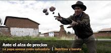 """MSN Noticias: """"LA PAPA SALVADORA"""""""