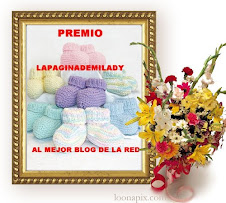 PREMIO LAPAGINADEMILADY
