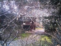 本光寺の門