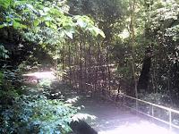 小幡緑地本園へつづく木道