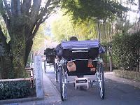 天龍寺へ抜ける人力車