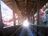 方広寺 上天台舎利殿へ続く階段の途中から