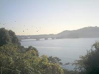 浜名湖S.A.からの眺め