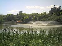 名古屋城と噴水