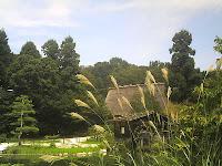 奥池の水車とススキ