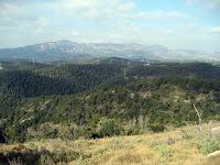 La Serra Llisa