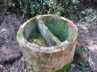 Cup a prop de l'aixopluc ginebre 1