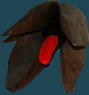 Fruita-10. Fusta, pintura acrílica i tela