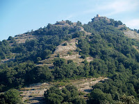 El Castell de Torelló des del Coll de Gallina