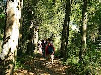 Itinerari ambiental del riu Mèder
