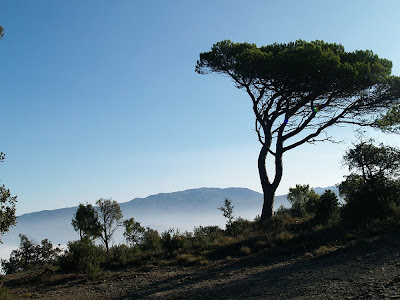 El Montseny des del Collet del Fabregar