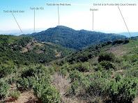 Vista de la Serra de les Pedritxes des de la base de la Punta dels Caus Cremats