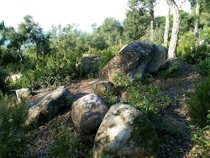 Granitoides sota el Terme Gros