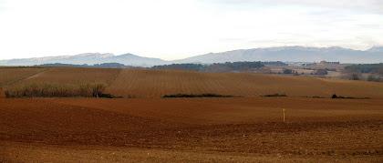 Panoràmica dels camps de Gallecs i les muntanyes al fons