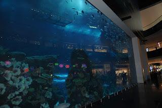 Dubai Mall Acquarium, Dubai