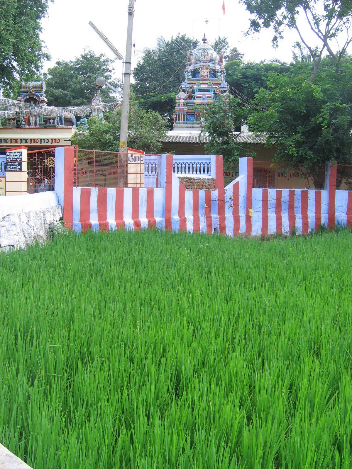 Anjaneya Temple, Kadayanallur