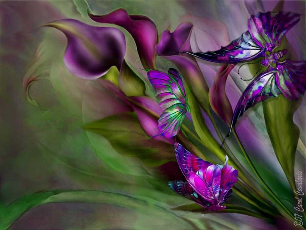 Best Purple Butterfly Background Wallpapers