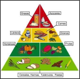 Quimica1101 - Que alimentos contienen carbohidratos ...