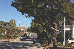 Cedar Key Main Street