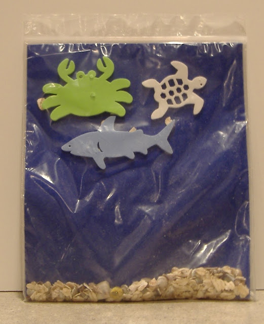 aquarium in a bagy