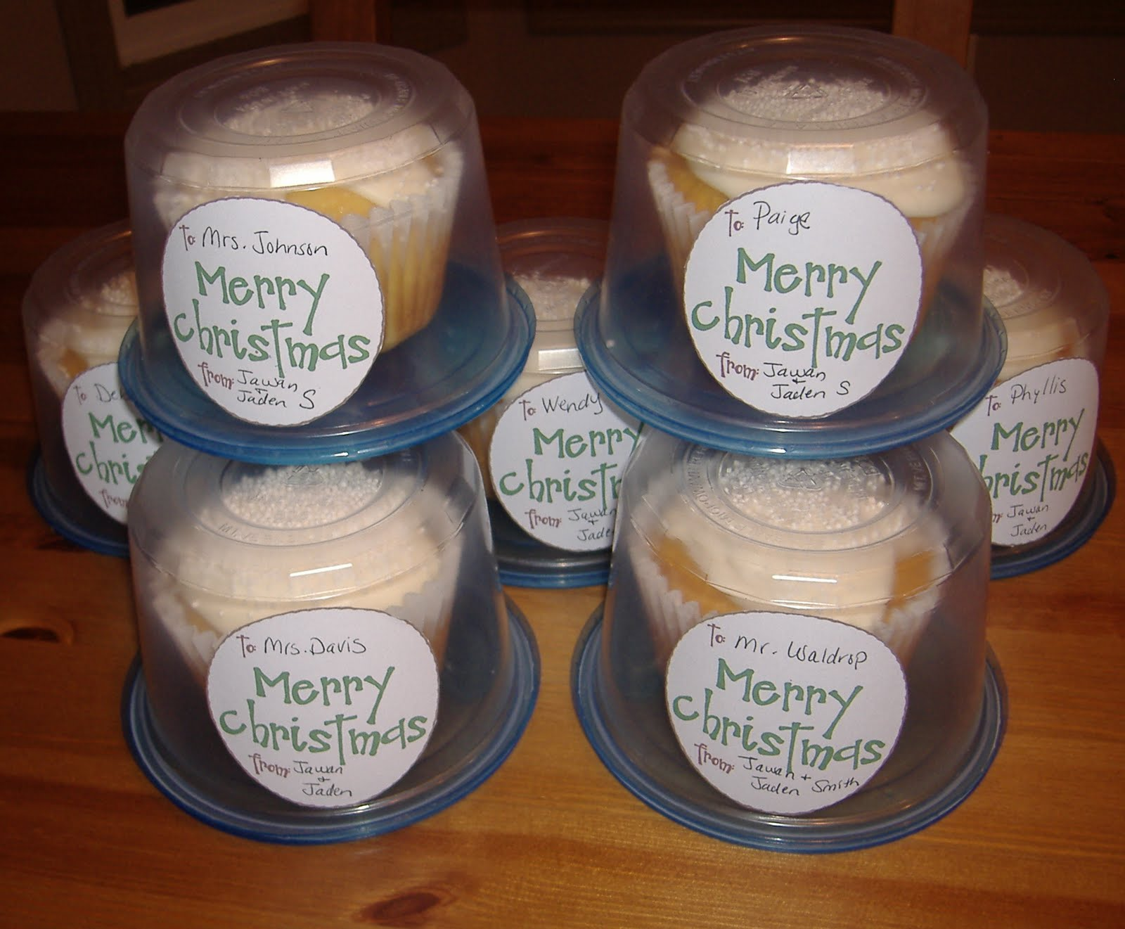 Individual Plastic Cupcake Containers