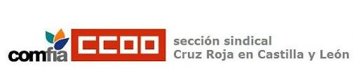 Sección Sindical CCOO Cruz Roja en Castilla y León