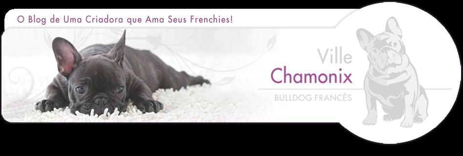 O Blog De Uma Criadora Que Ama Seus Frenchies!